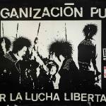 Federación anarco-punk